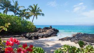 Pacific Ocean Beach Hawaii